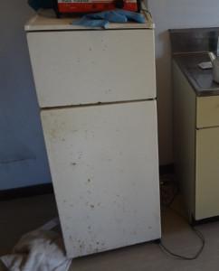 松山市で冷蔵庫回収の写真